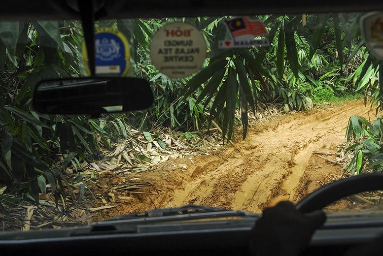 Cameron Highlands Muddy Road