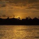 Uncle Tan: Borneo rainforest on a budget
