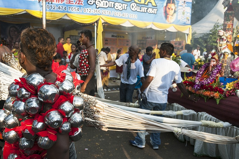 Thaipusam Who Needs Horses