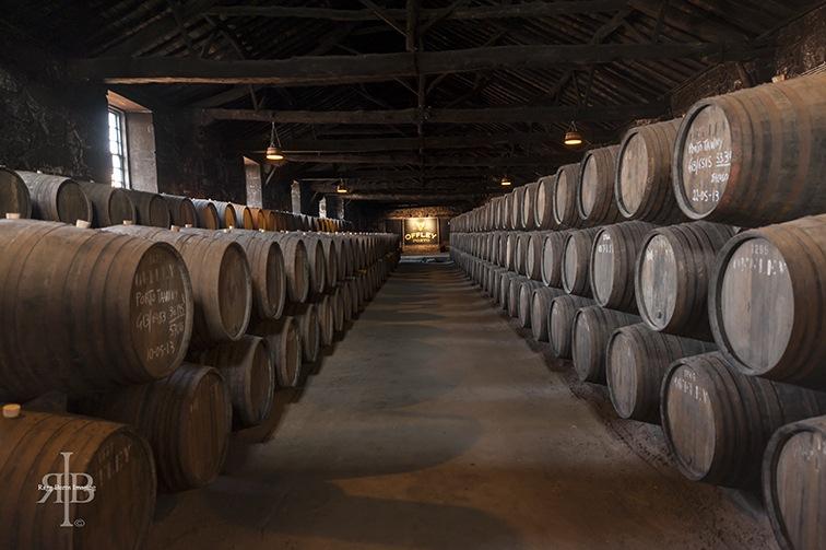 Porto Offley Barrels
