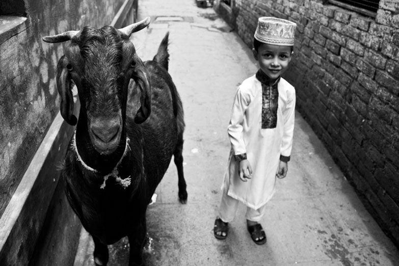 Varanasi muslim boy goat