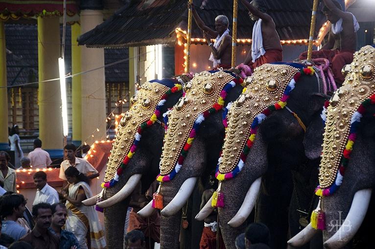 India Onam elephants in line
