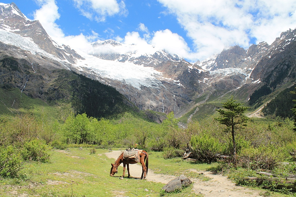 backpacking yubeng 5 reasons to go to Yunnan