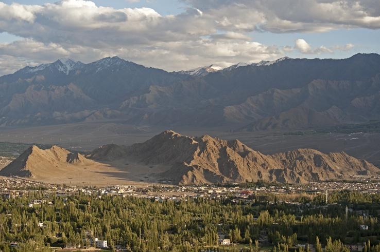 Wild World: Ladakh, India