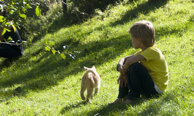 blonde kid with cat