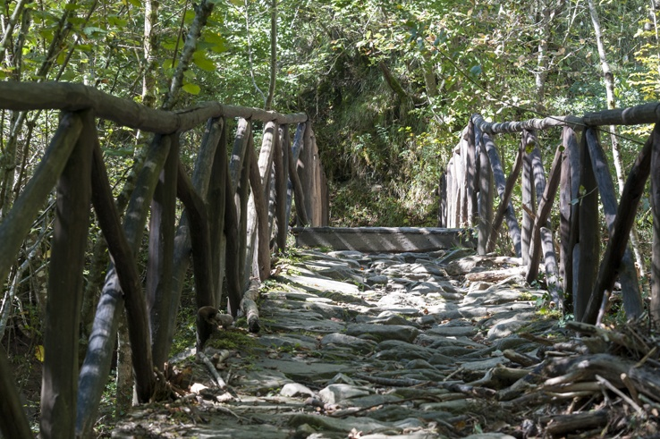 wood and stone bridge