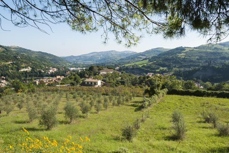 Borghetto di Brola view
