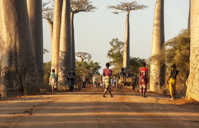 Madagascar Avenue of baobabs women