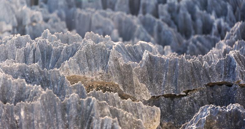 Tsingy de Bemaraha Limestone Edges