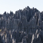 The stone forest of Tsingy de Bemaraha