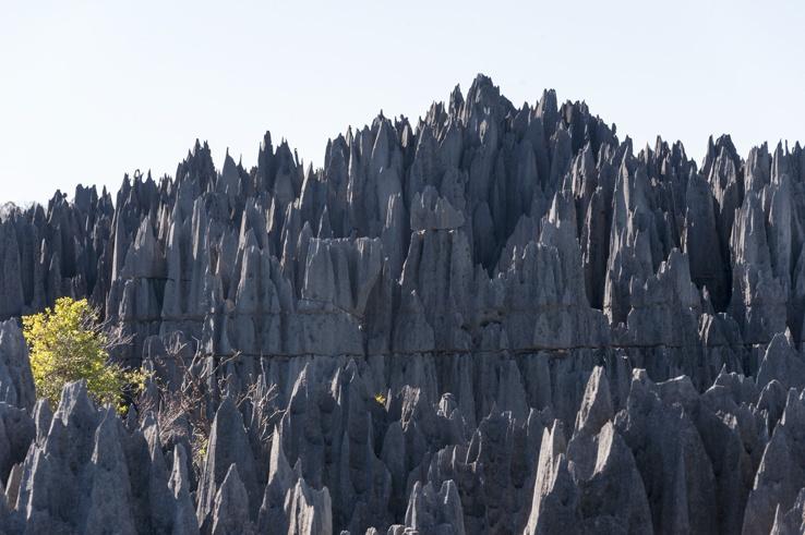 Grand Tsingy Limestone