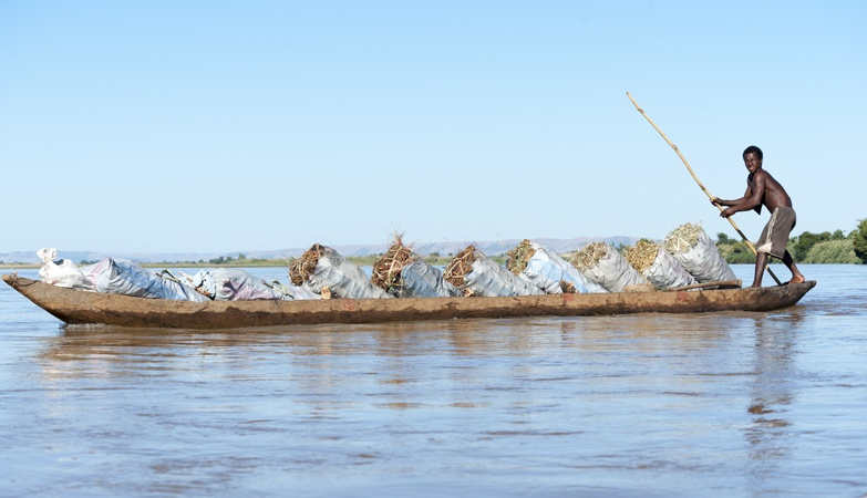 Madagascar Tsiribihina River pirogue