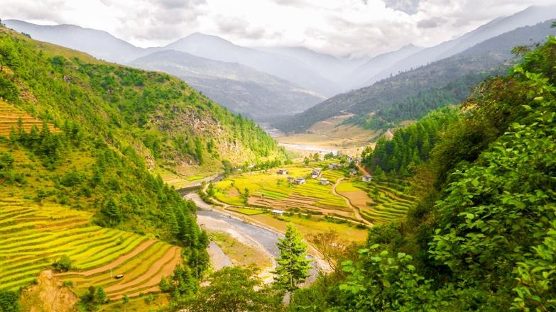 nepal lukla rice terraces