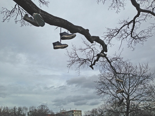 tree with shoes heide park dresden