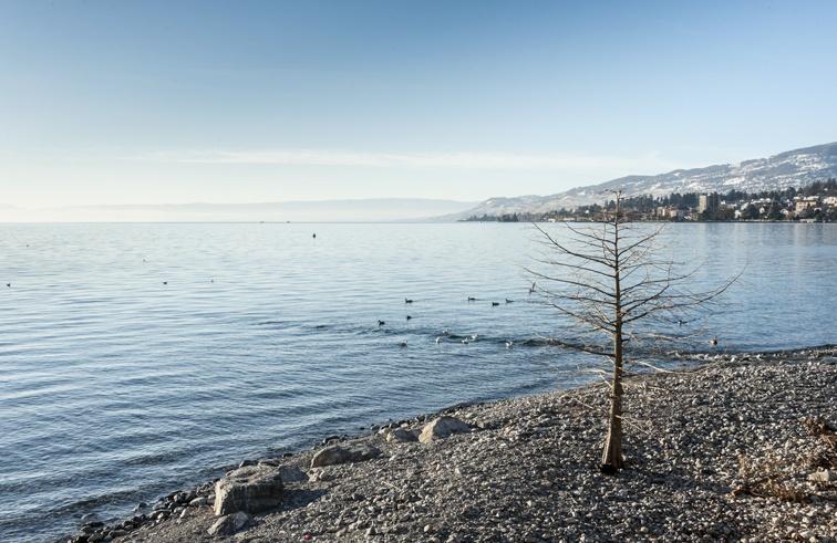 Switzerland Montreux lake leman