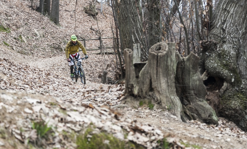 downhill mountain biking biella