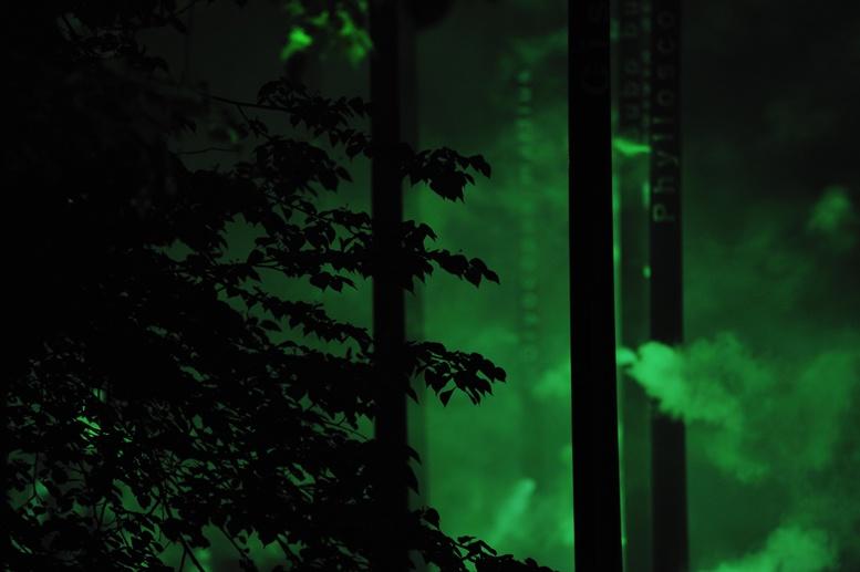 milan piazza san fedele forest fuorisalone