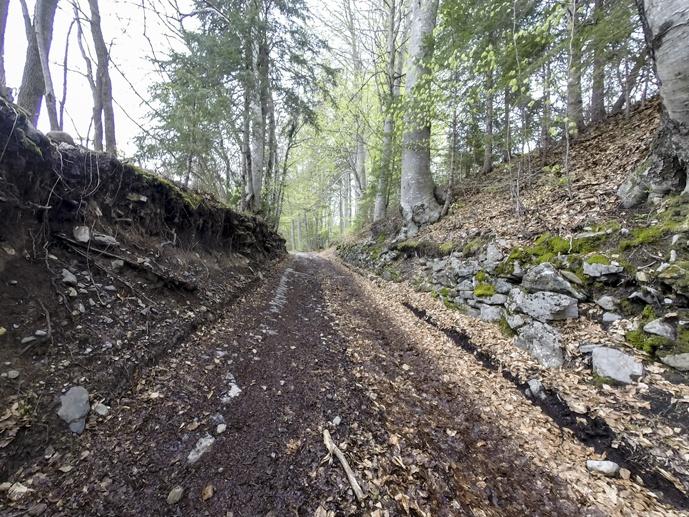 bike path friuli