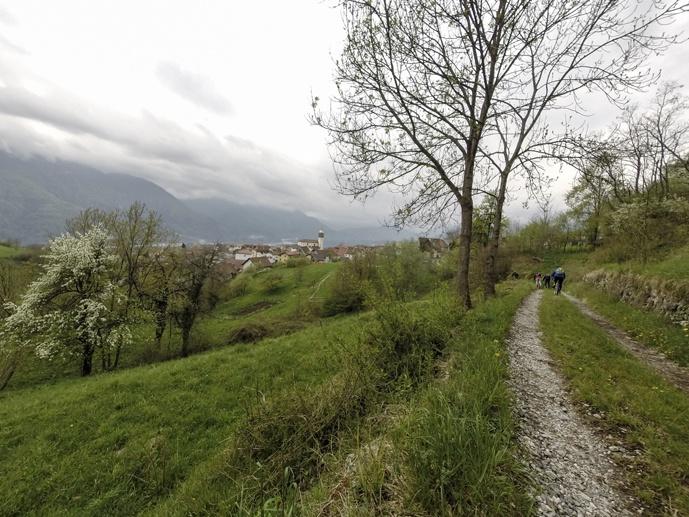 bike path carnia friuli