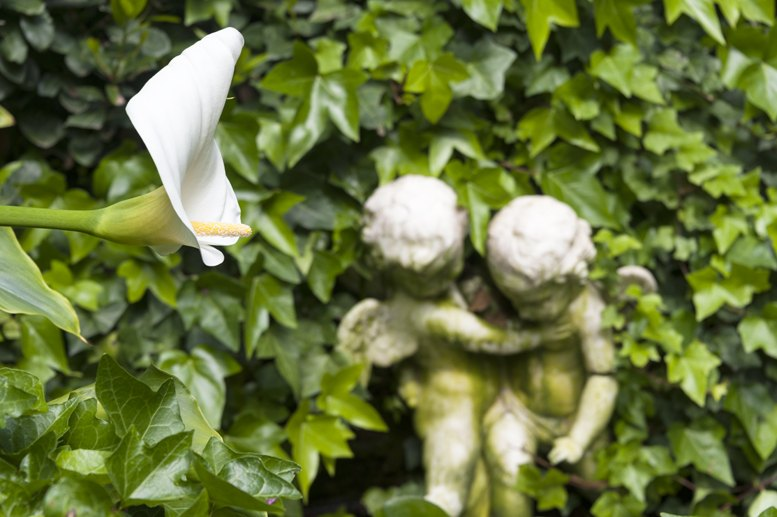 santa clotilde gardens angels