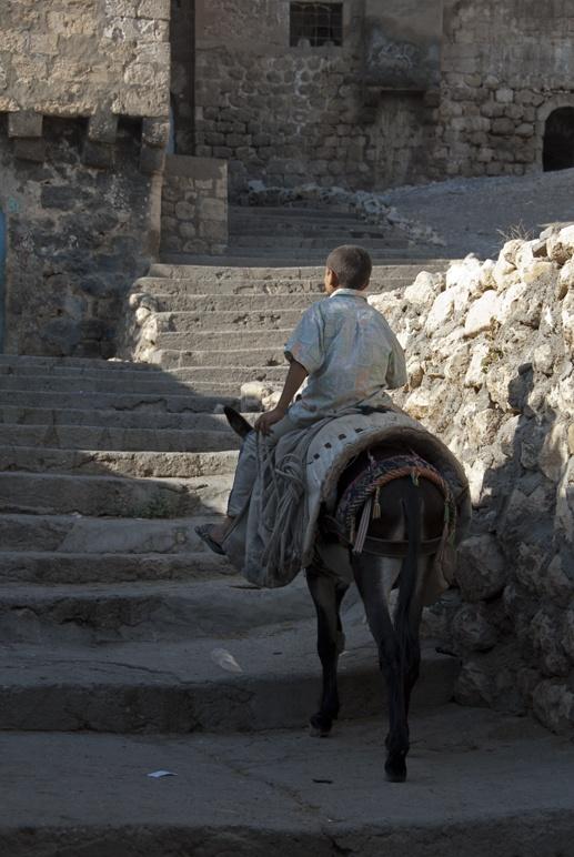 boy on donkey silk road travel