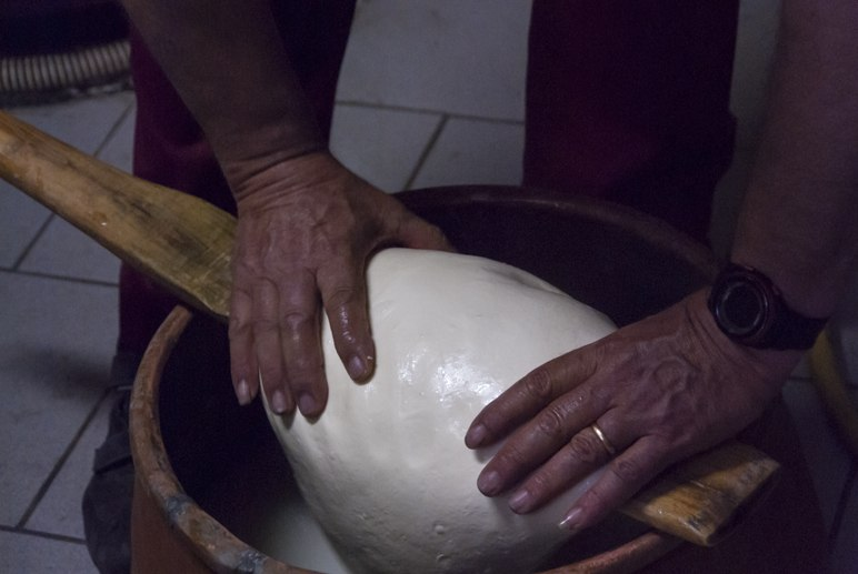cheesemaking sicily countryside
