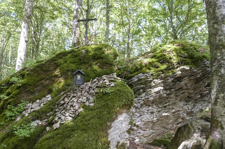 la verna forest cross