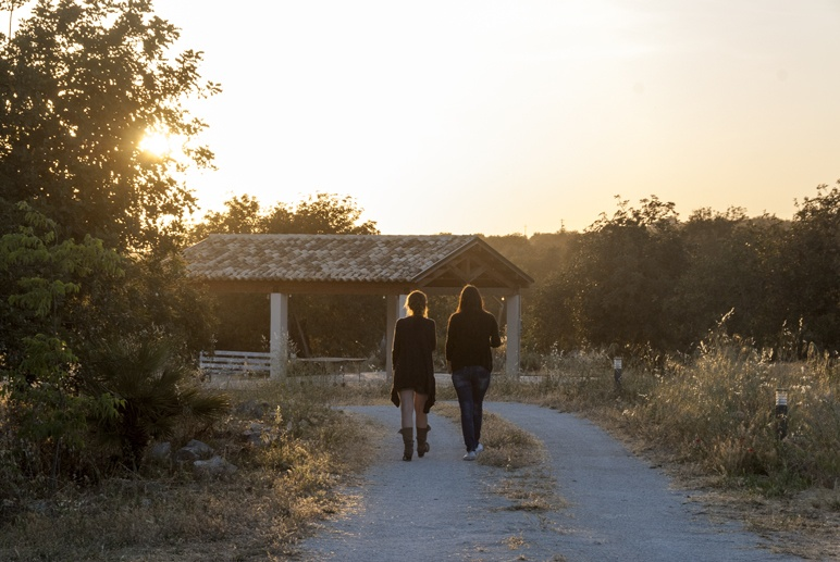 cooking class in sicily girls walking sunset
