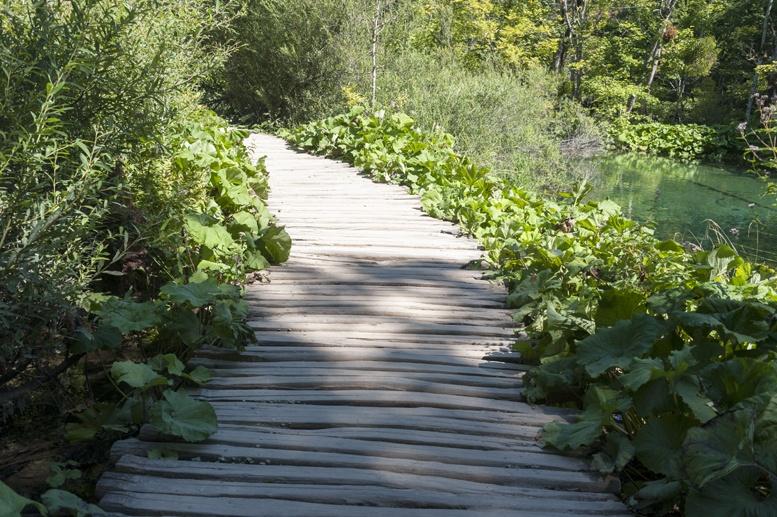 wooden walkway plitvice