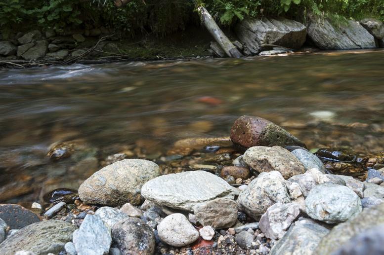 czech paradise kamenice river rocks