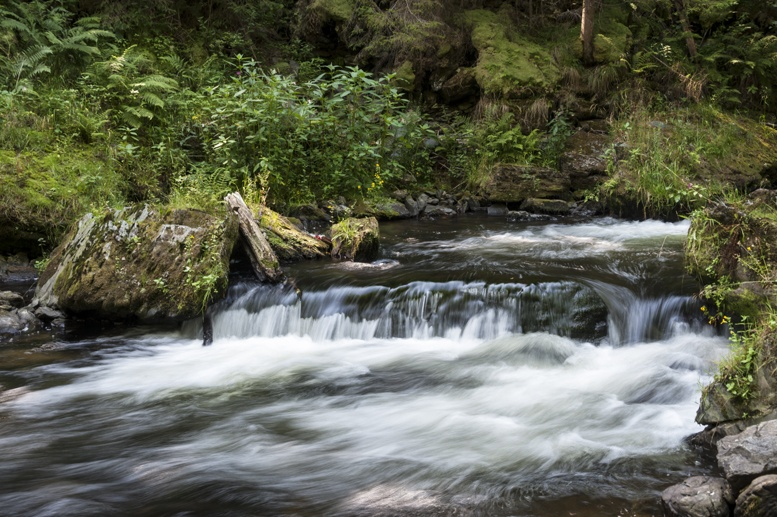 czech paradise kamenice river wild