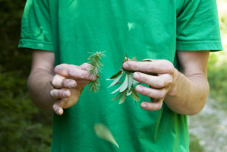 herb hands green tshirt