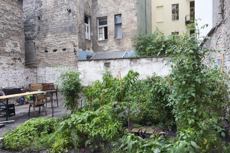 budapest massolit garden