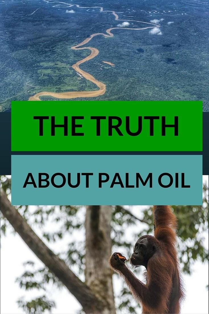 palm oil pin