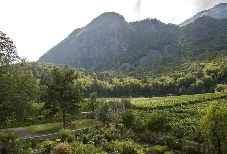 hotel stroblhof wine south tyrol