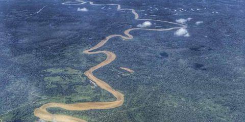 palm oil malaysia indonesia