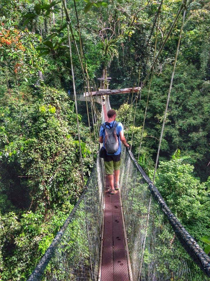 canopy walk mulu sarawak