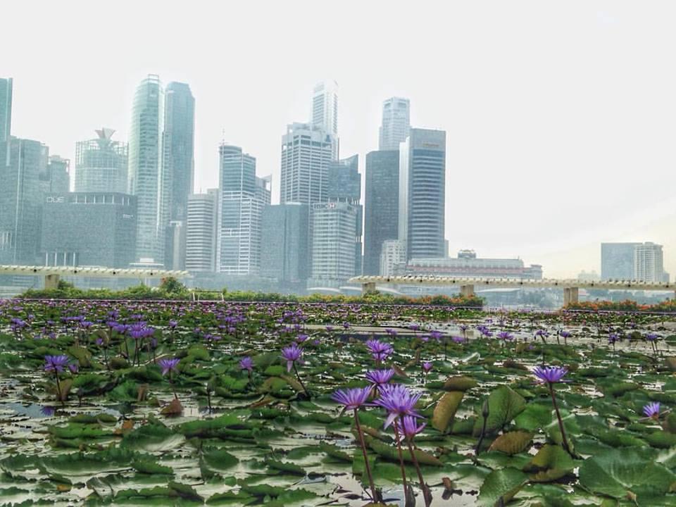 singapore skyline haze