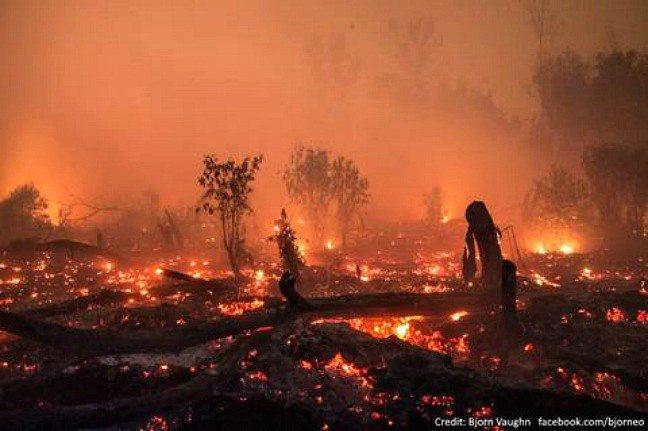indonesia is burning