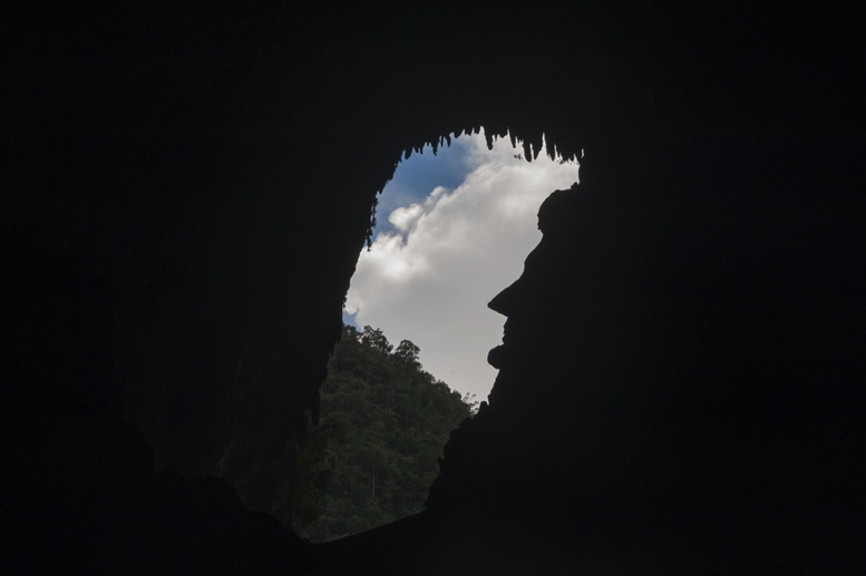 abe lincoln deer cave mulu
