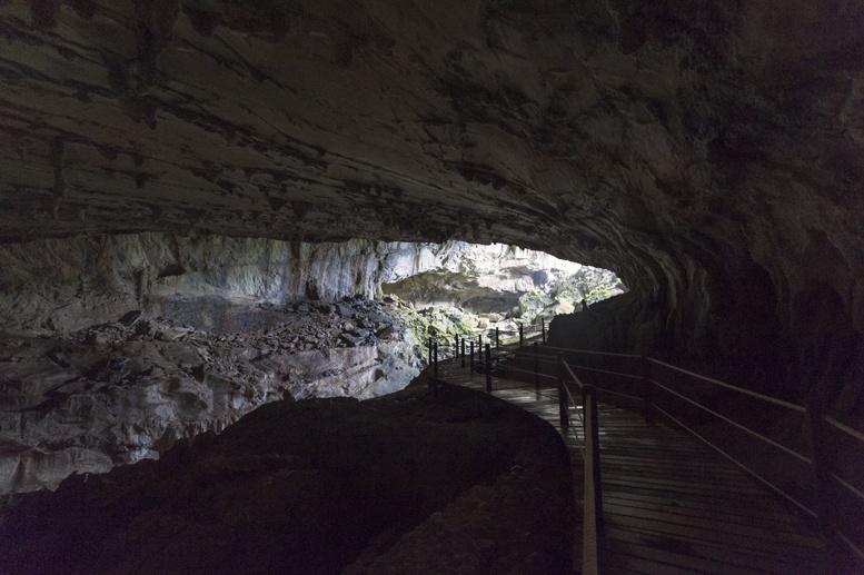 clearwater cave mulu boardwalk
