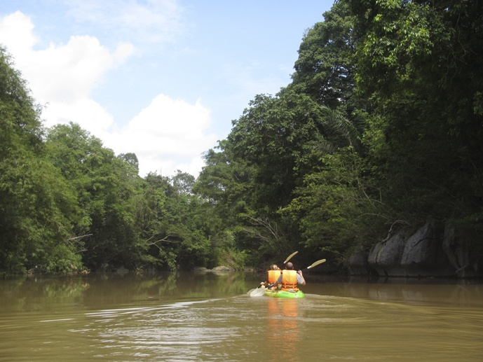 back kayaking sarawak borneo