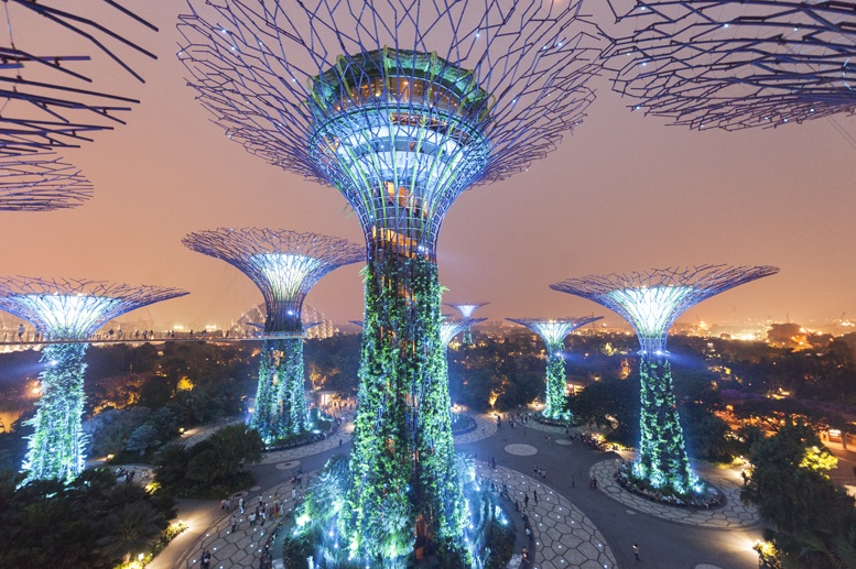 supertree skywalk night singapore
