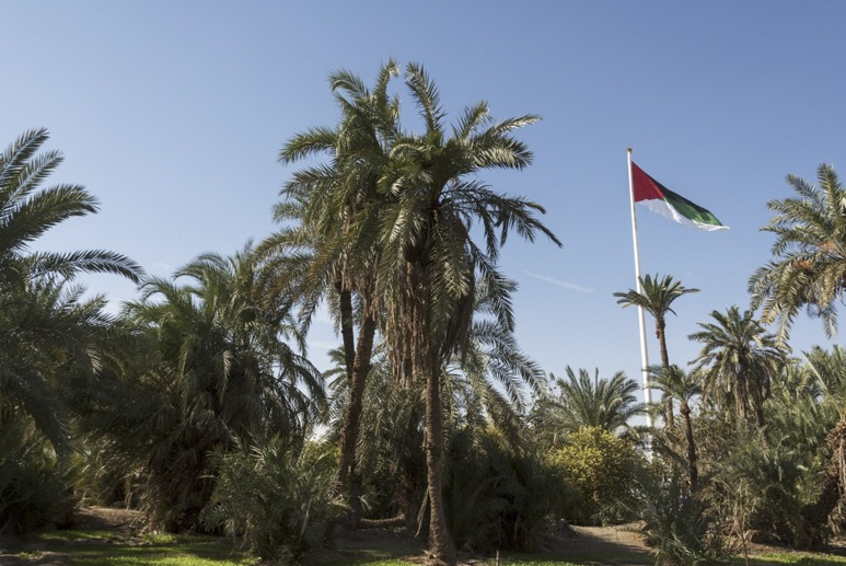 Aqaba-Flag-and-Garden