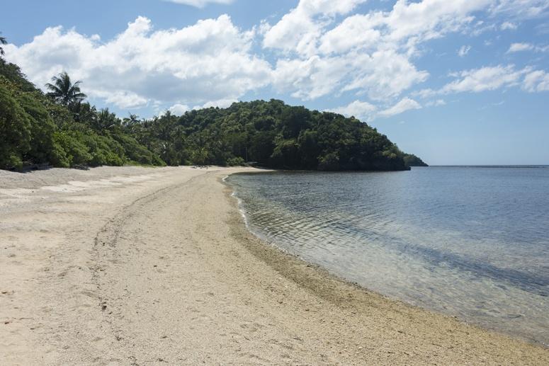 turtle beach danjugan island philippines
