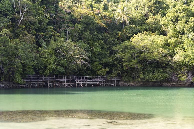 lagoon bridge danjugan