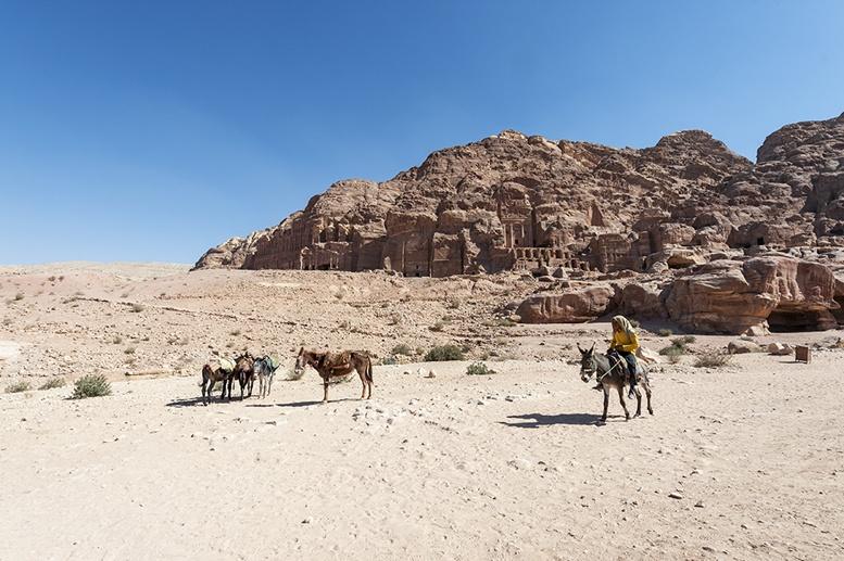 Petra-with-Donkey