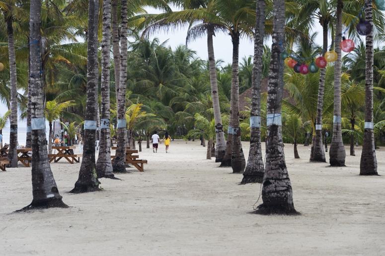 Bohol Beach club beach