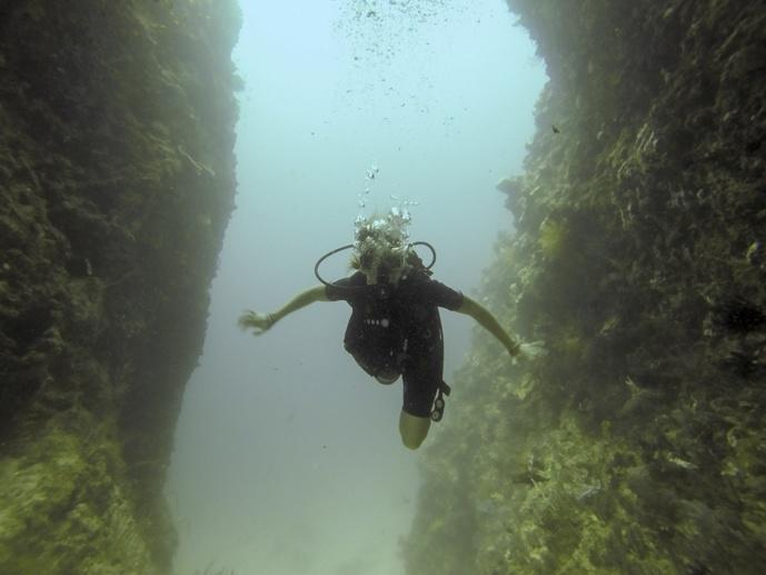 diving bohol beach club
