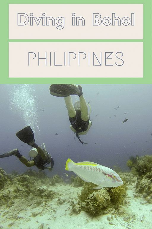 bohol diving pin
